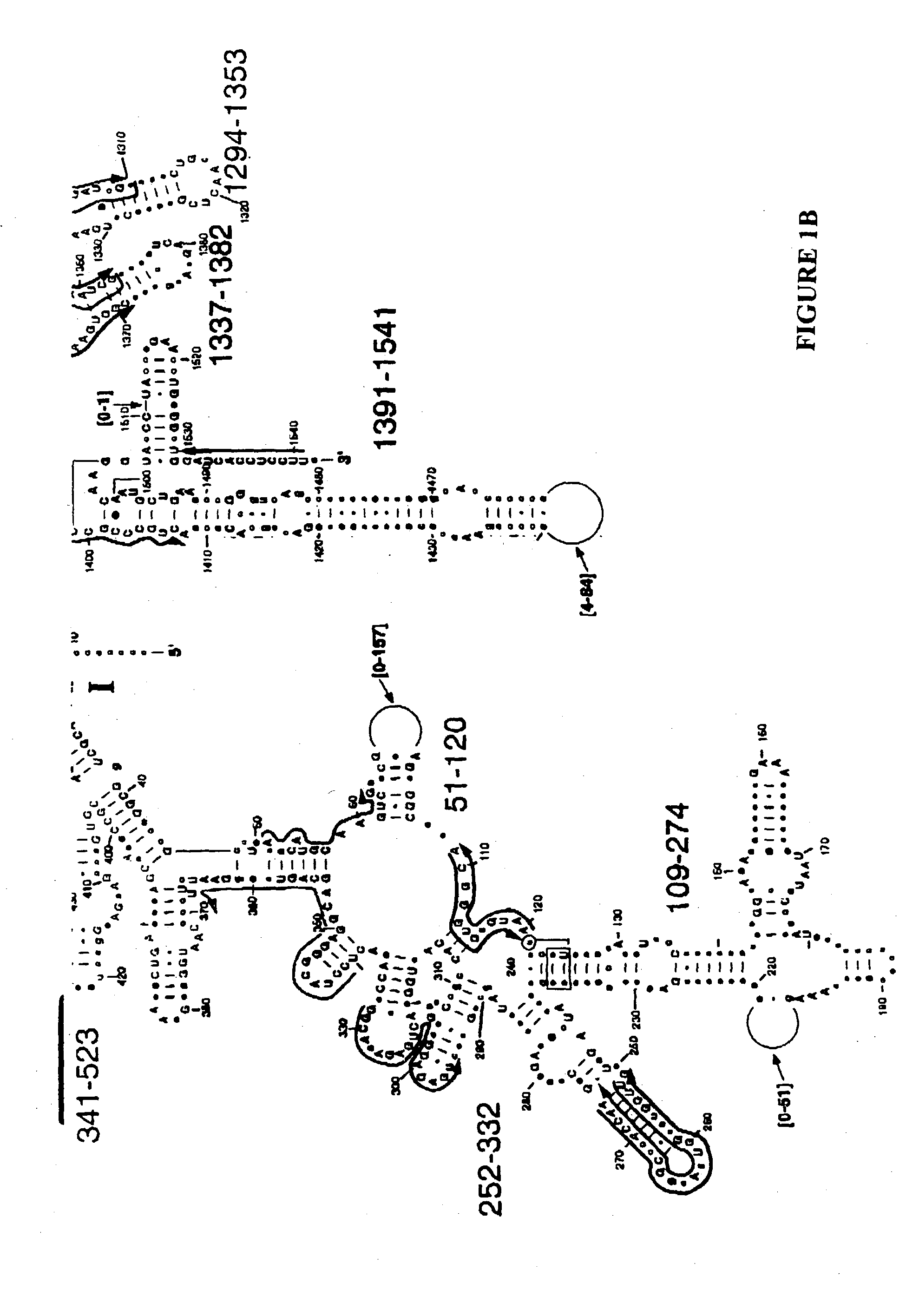 patent us20030175696 method for rapid detection and identification
