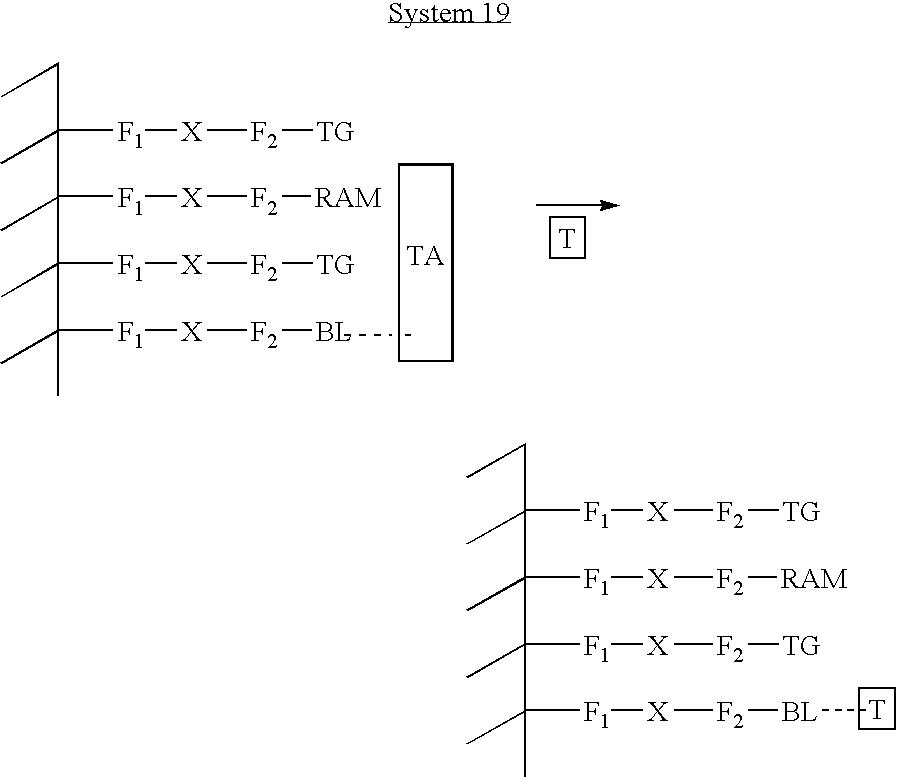 Figure US20040146909A1-20040729-C00055