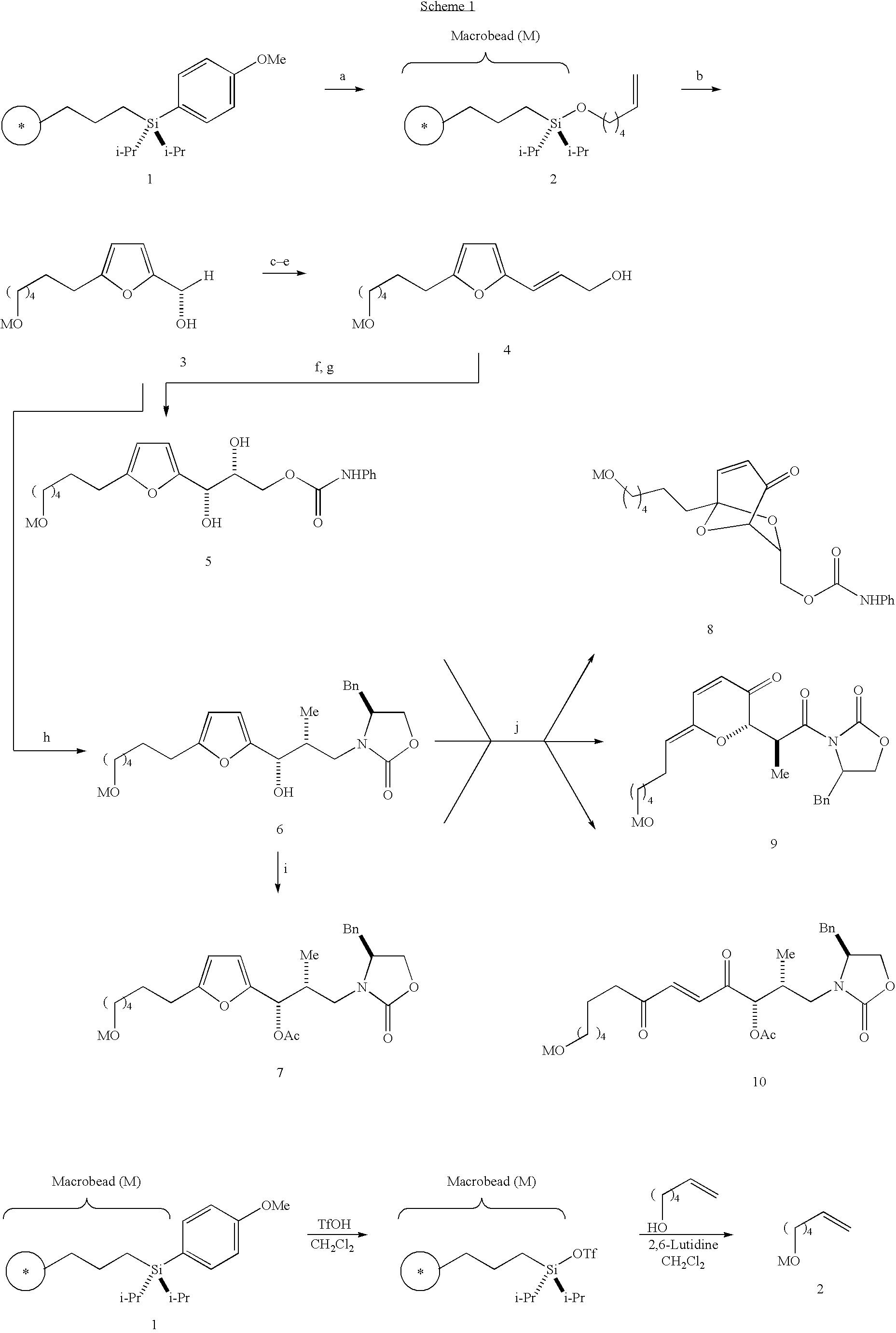 Figure US20040214232A1-20041028-C00013