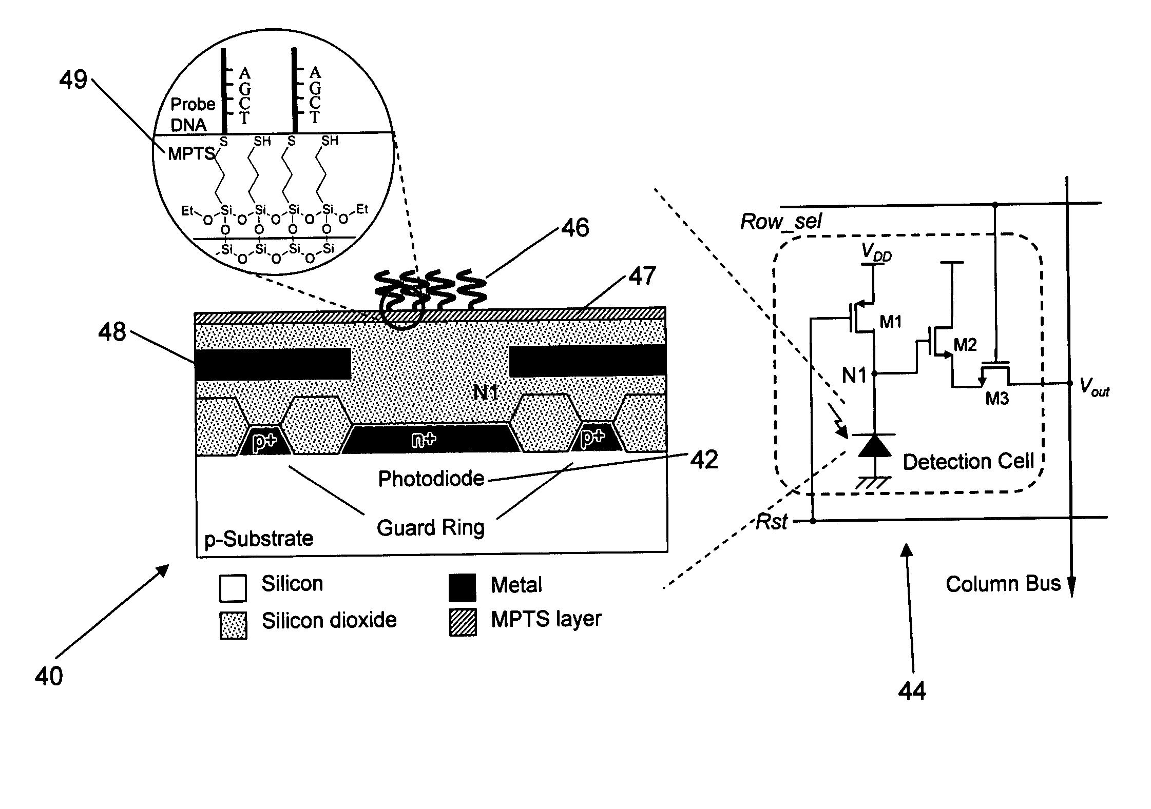 patent us20060084069