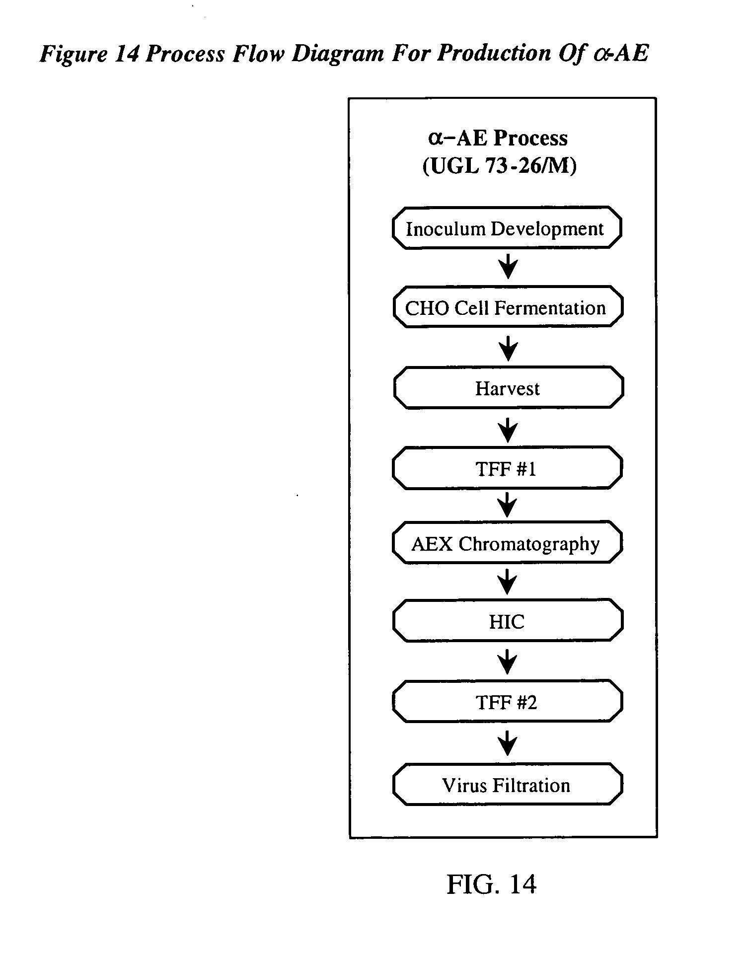 Peptidylglycine alpha amidating monooxygenase enzyme