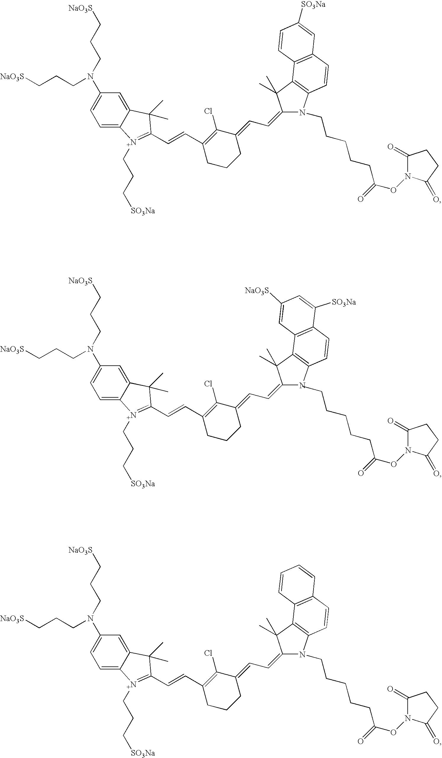 Figure US20070042398A1-20070222-C00013