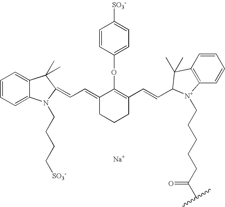 Figure US20070042398A1-20070222-C00026