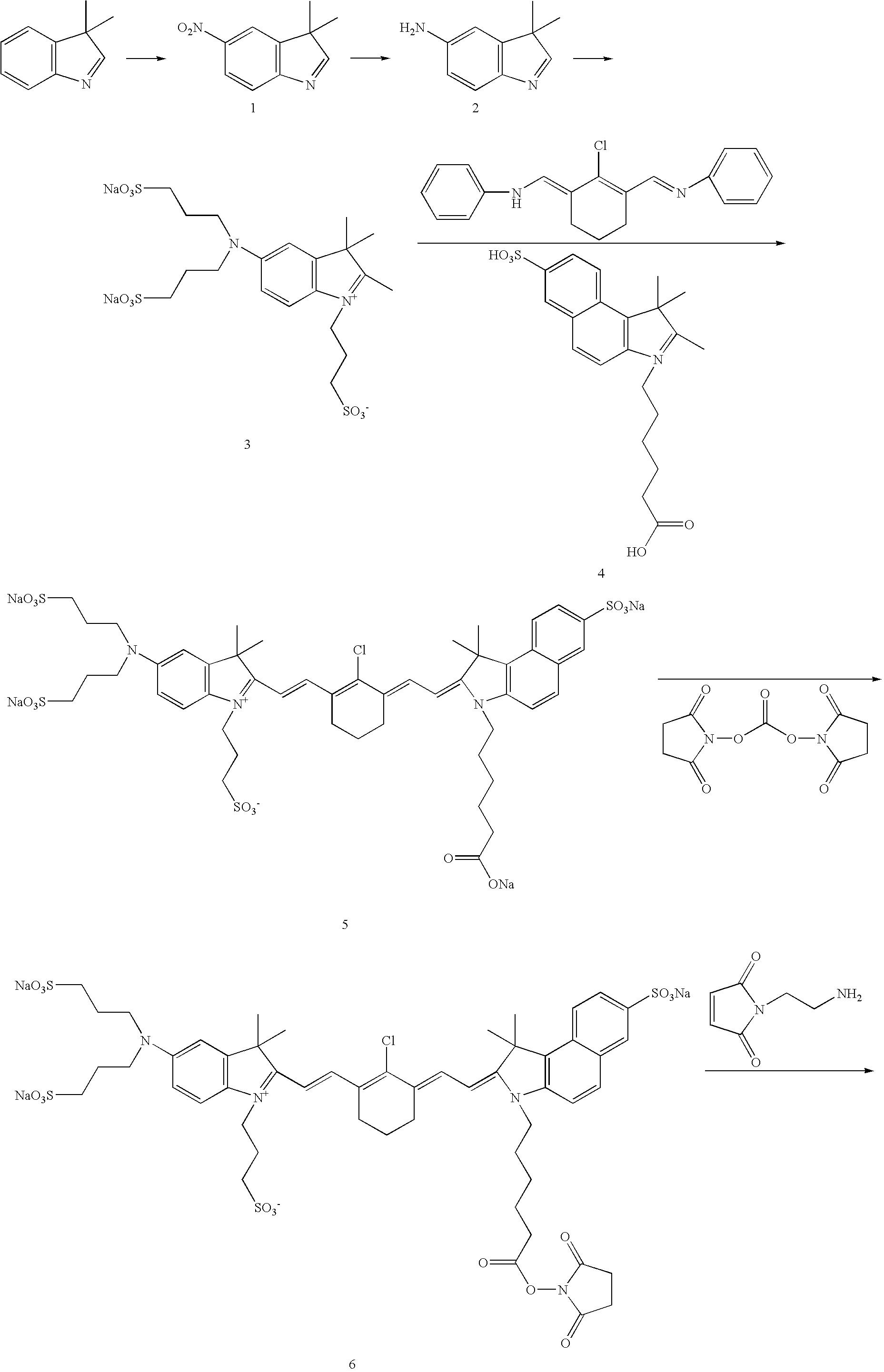 Figure US20070042398A1-20070222-C00028