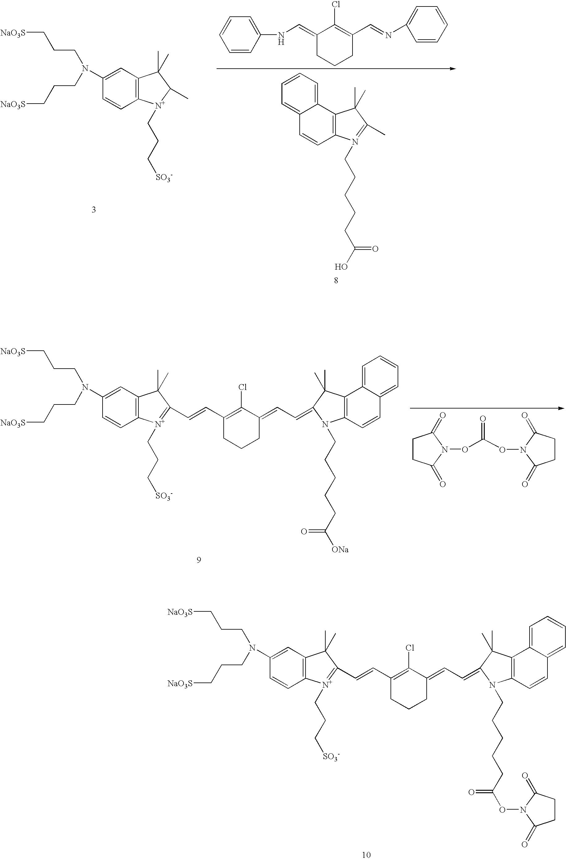 Figure US20070042398A1-20070222-C00030