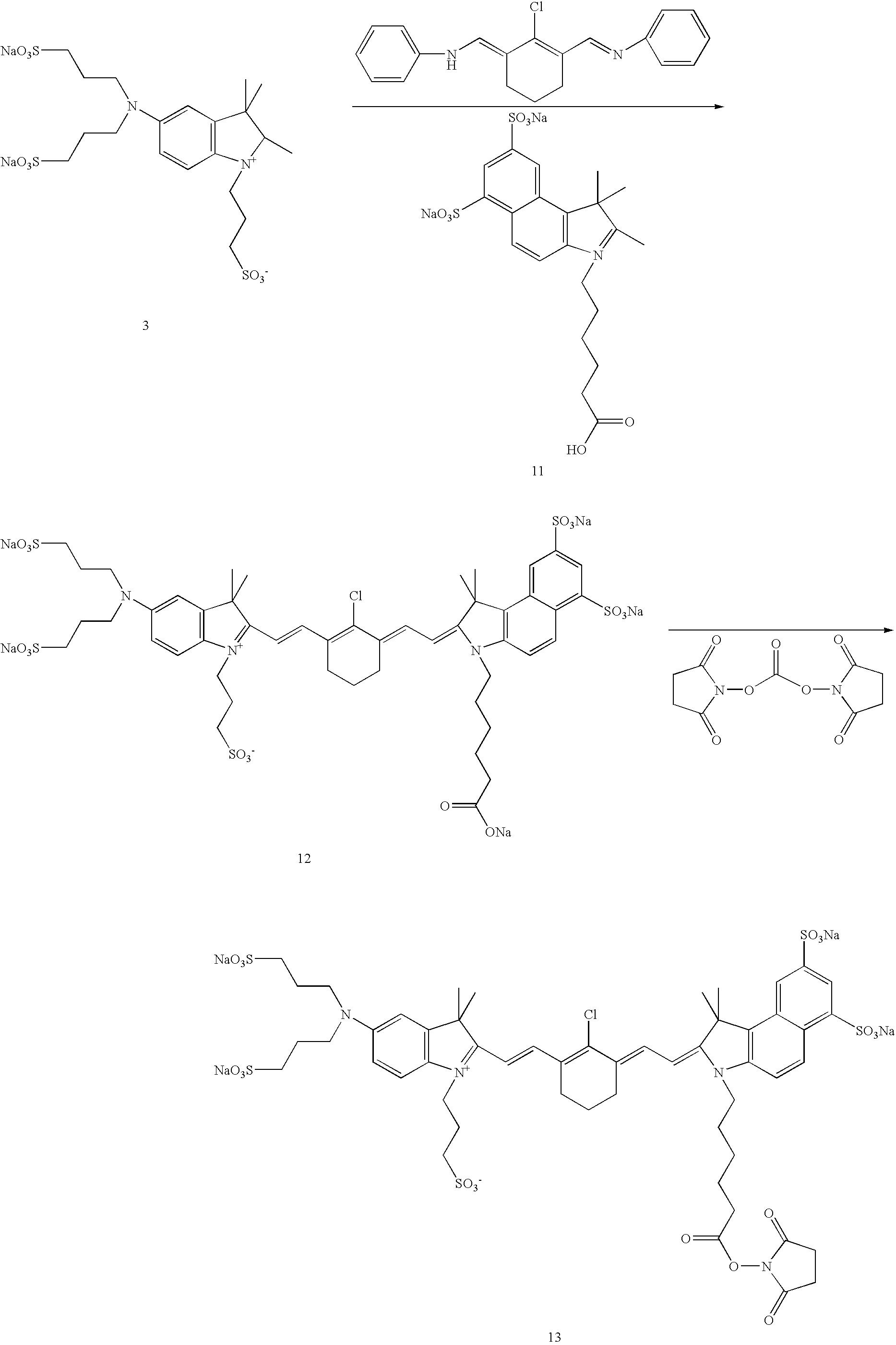 Figure US20070042398A1-20070222-C00031