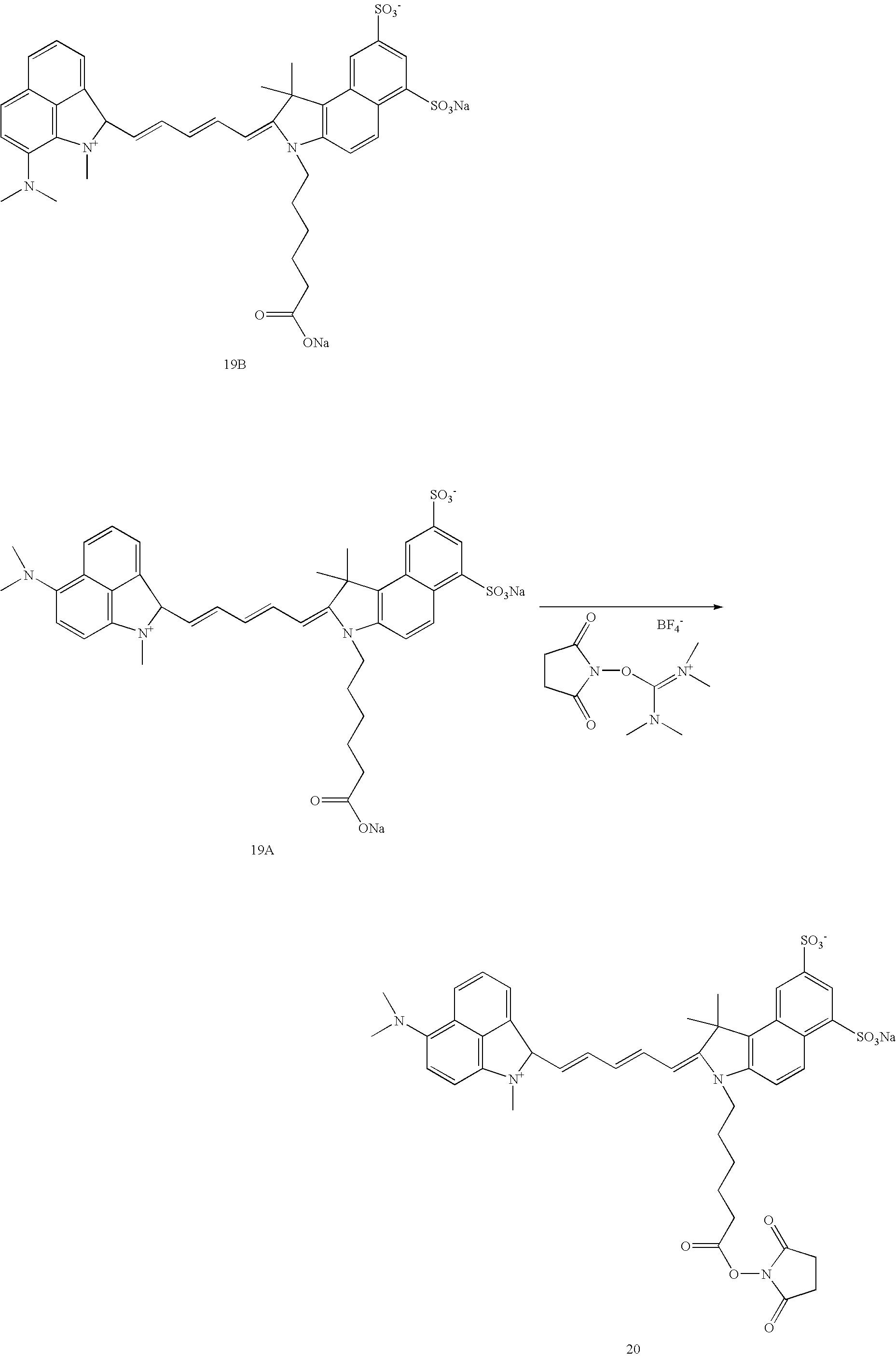 Figure US20070042398A1-20070222-C00033