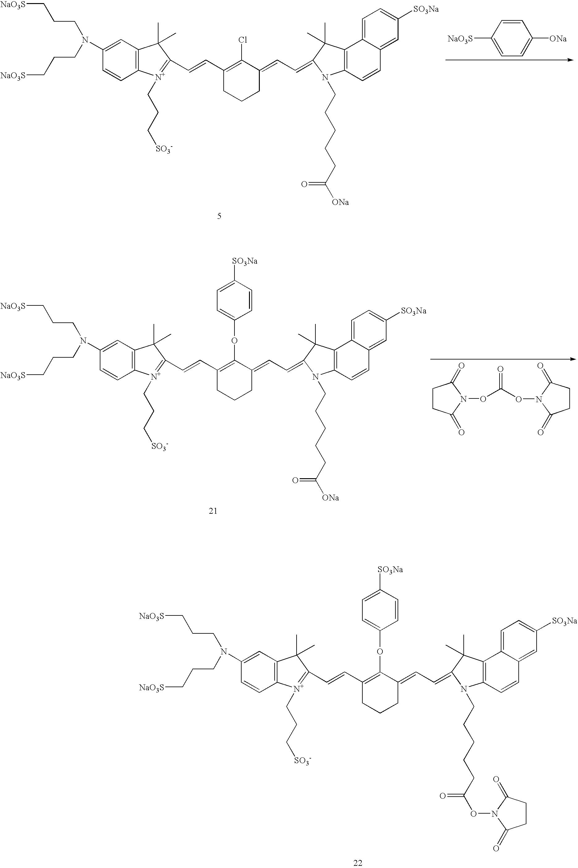 Figure US20070042398A1-20070222-C00034