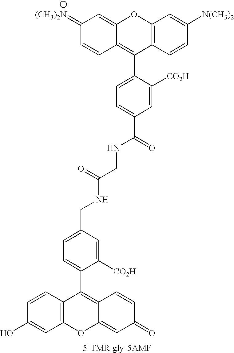 Figure US20070154926A1-20070705-C00077
