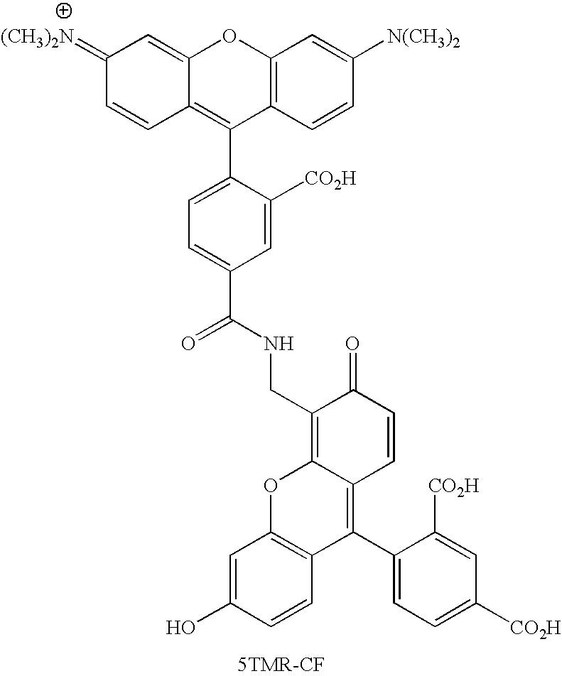 Figure US20070154926A1-20070705-C00116