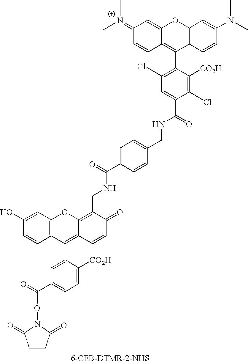 Figure US20070154926A1-20070705-C00121