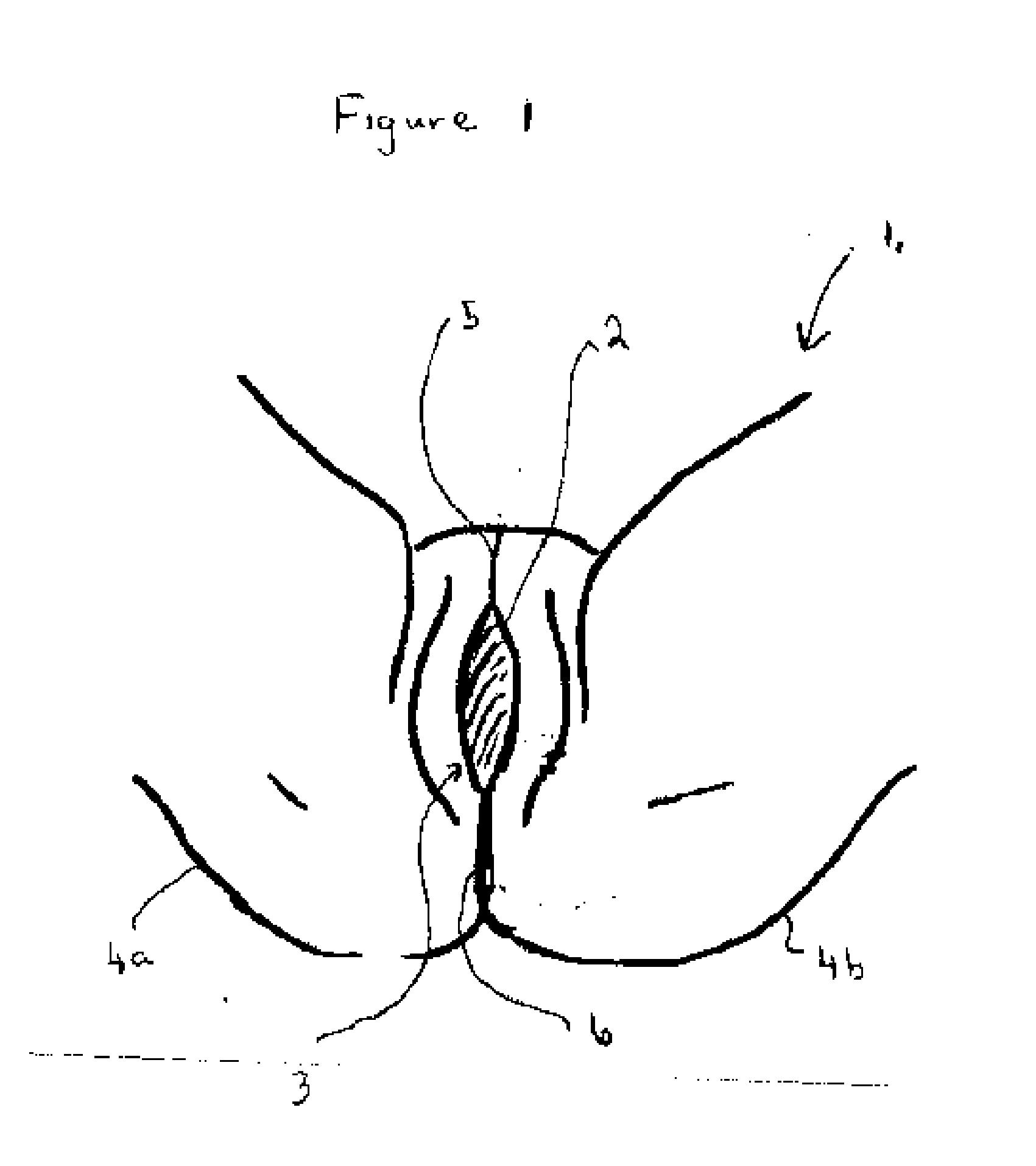 Male brazilian waxing with uncut erection 10
