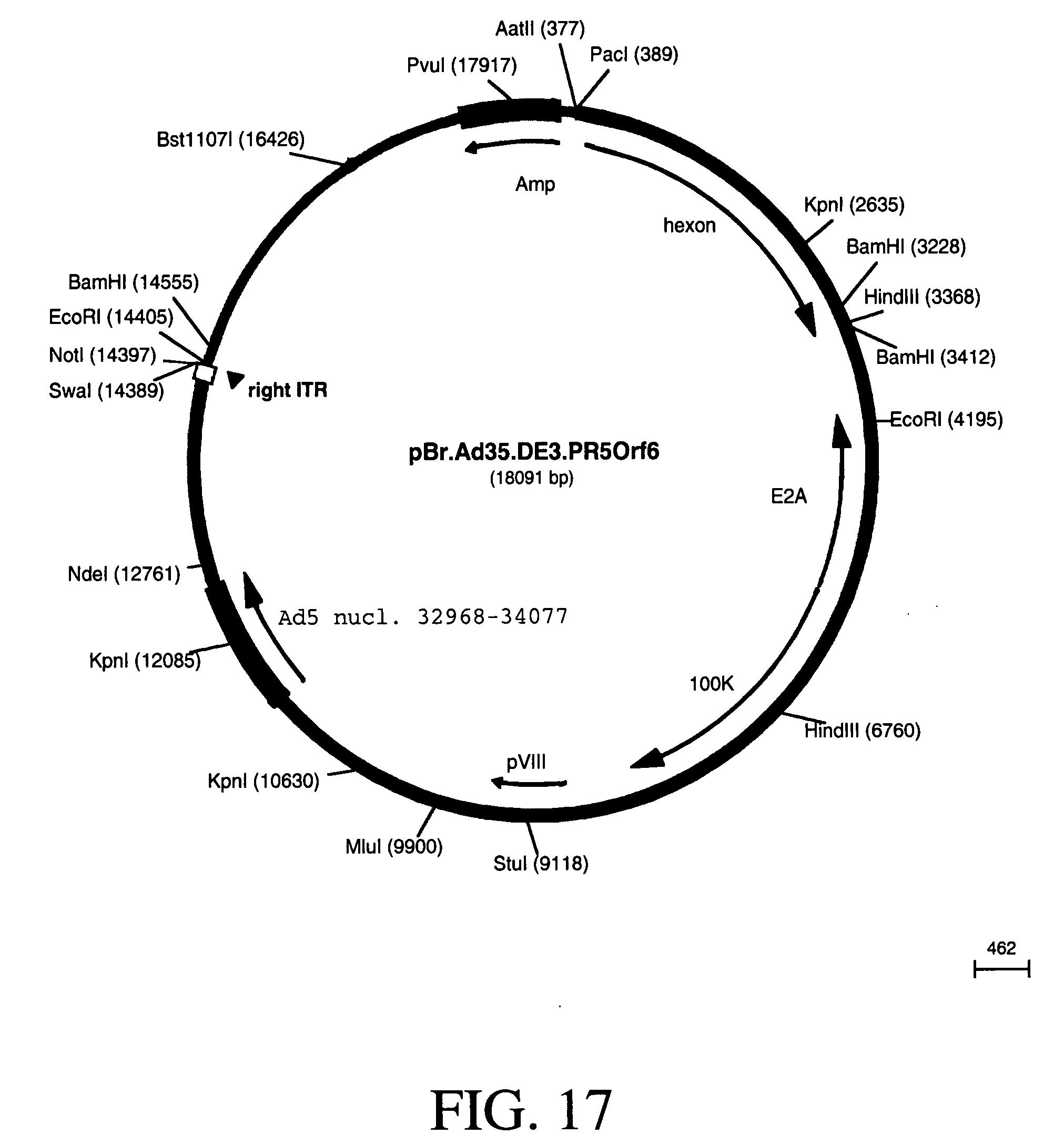 read совершенствование экспрессных методов индикации микобактерий