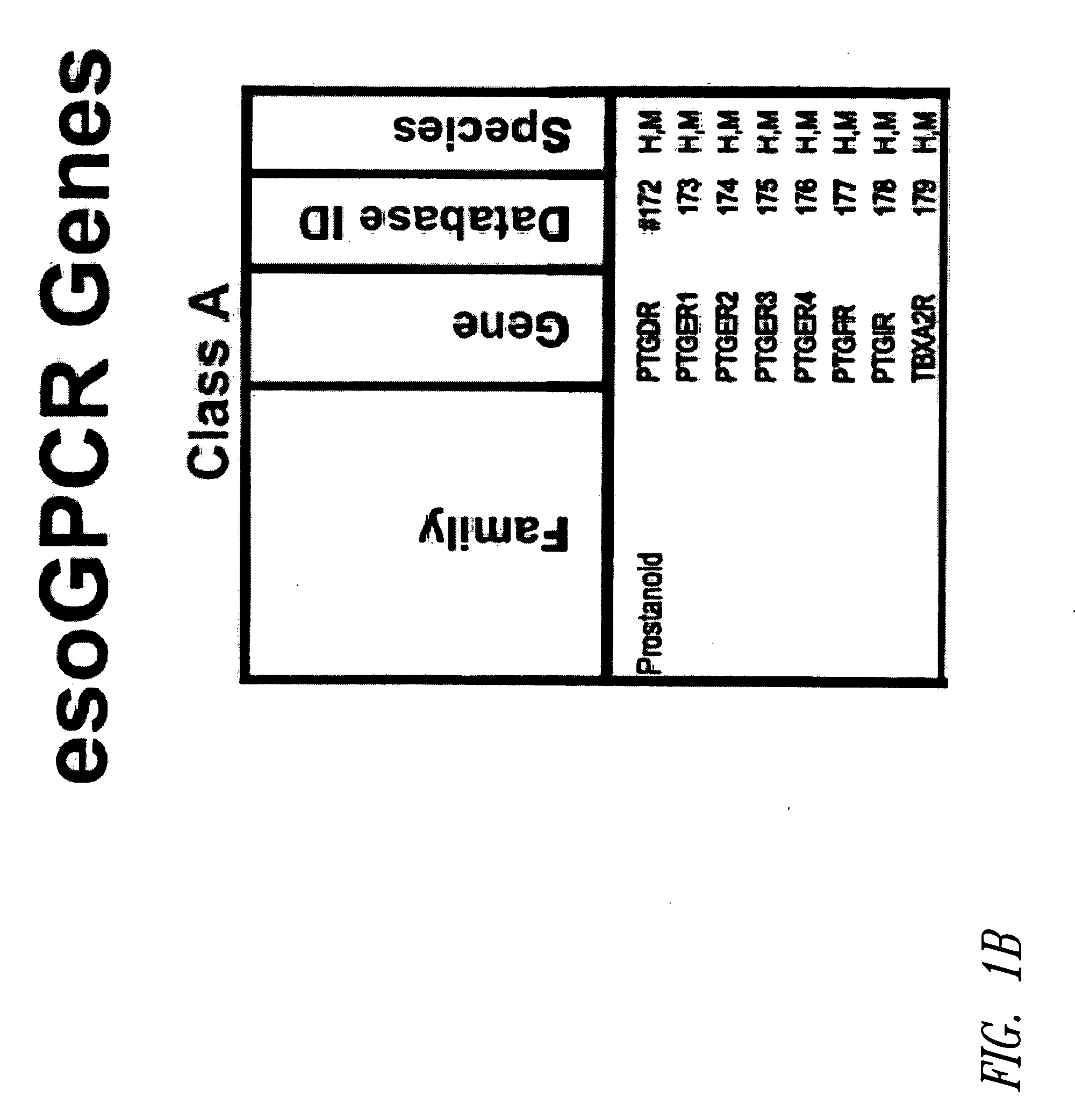 Us20080260744a1 g protein coupled receptors and uses thereof us20080260744a1 g protein coupled receptors and uses thereof google patents urtaz Choice Image