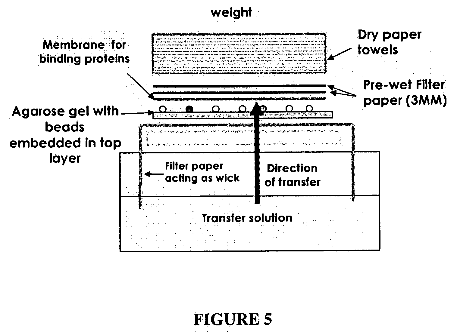 Patent Us20080268474 Prion Protein Ligands And Methods Of Use Circuit Breaker Analyzer Timer Cat03 Drawing