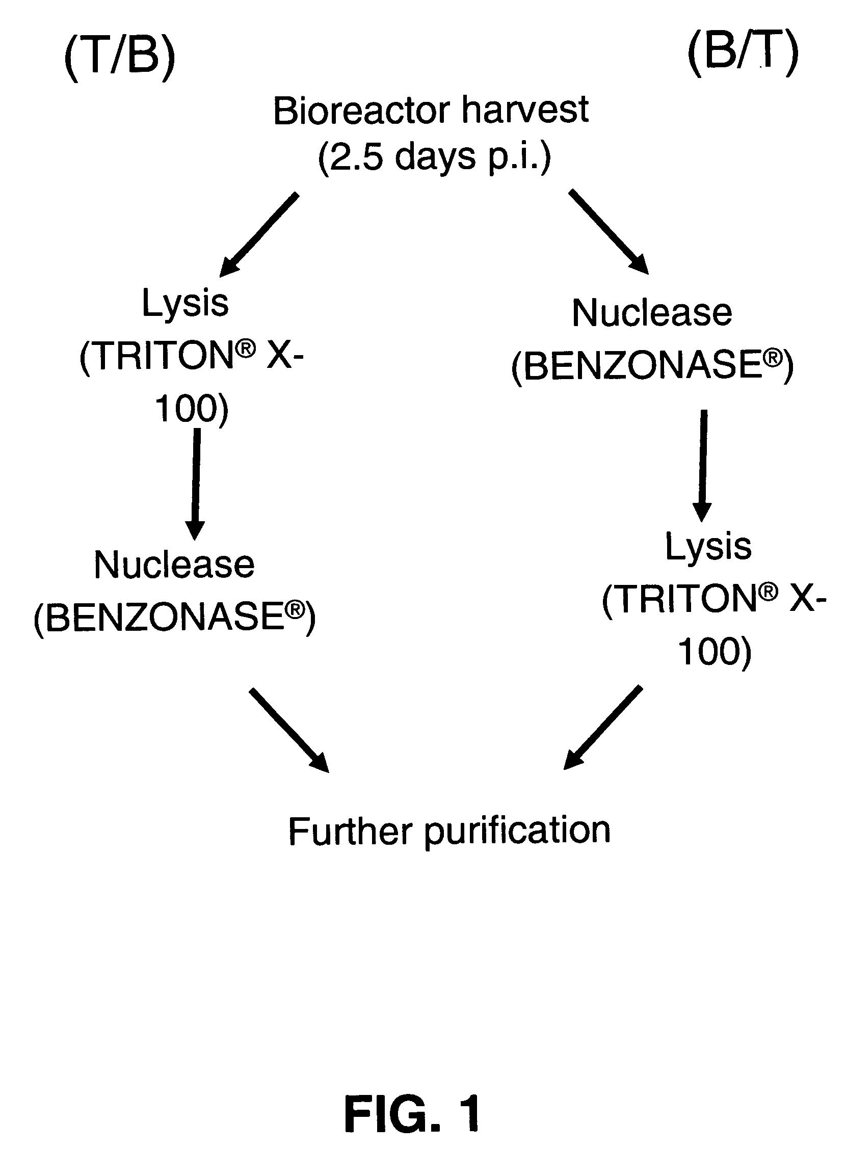 purification of viruses methods pdf