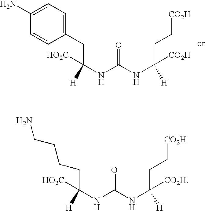Figure US20090061010A1-20090305-C00028