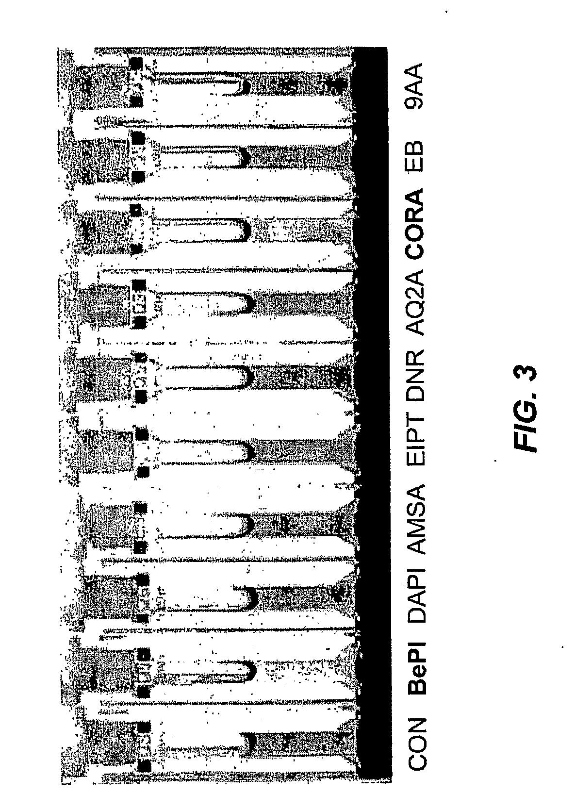 US20090221095A1 - Colorimetric Screening of DNA Binding