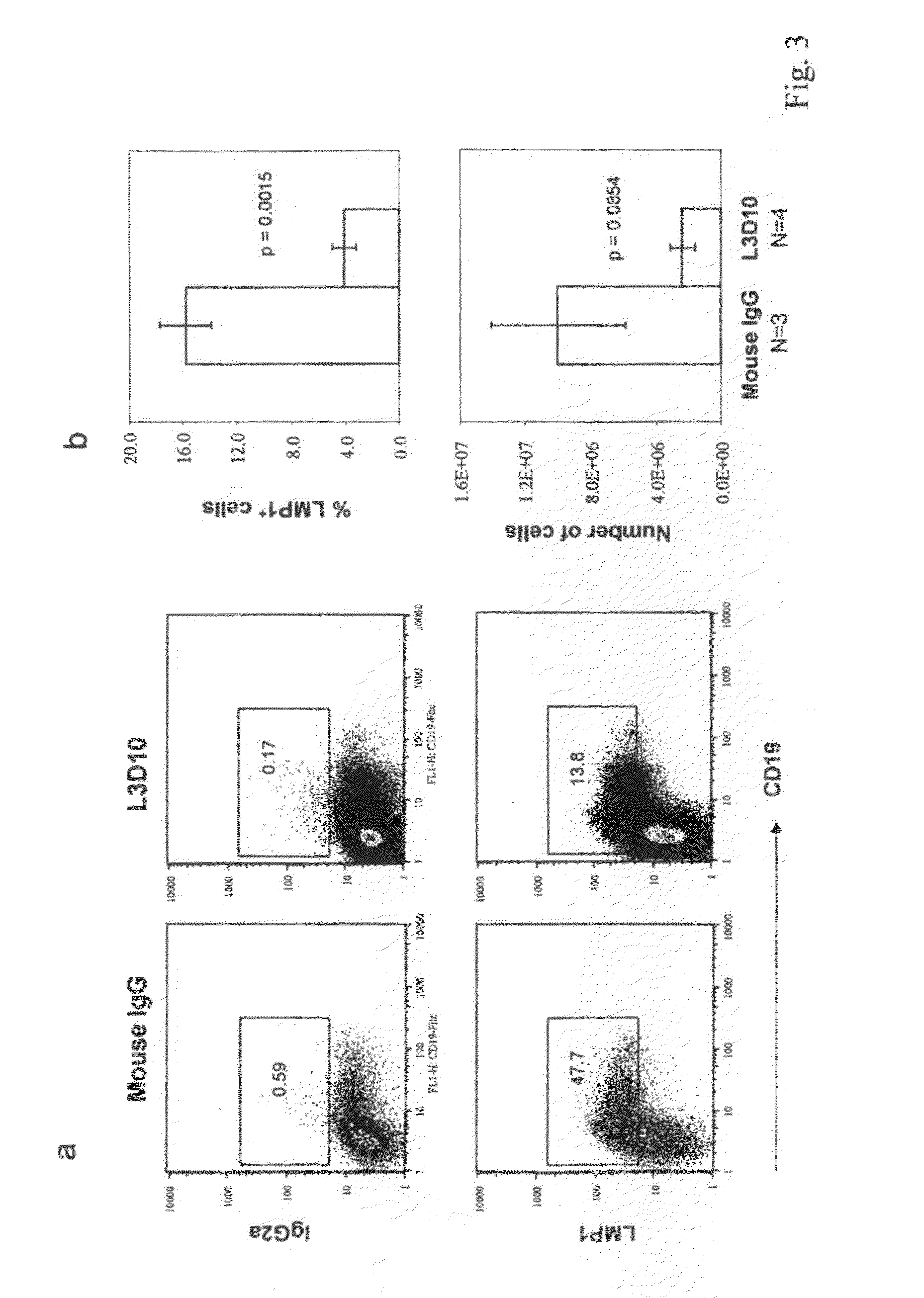 Monoclonal antibodies as a therapeutic approach for cancer Essay