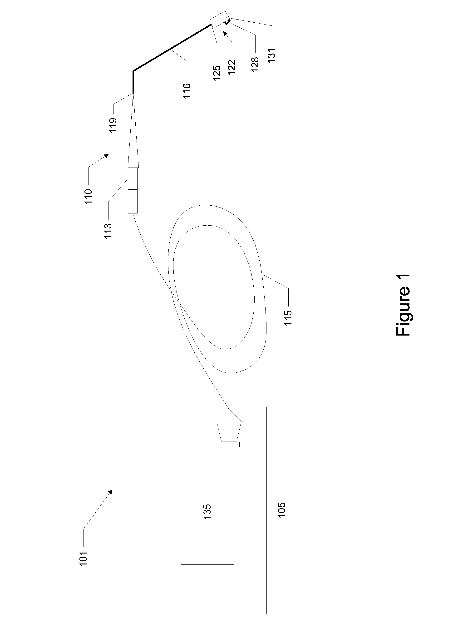 patent us device for assessing ischemia in nerve root patent drawing