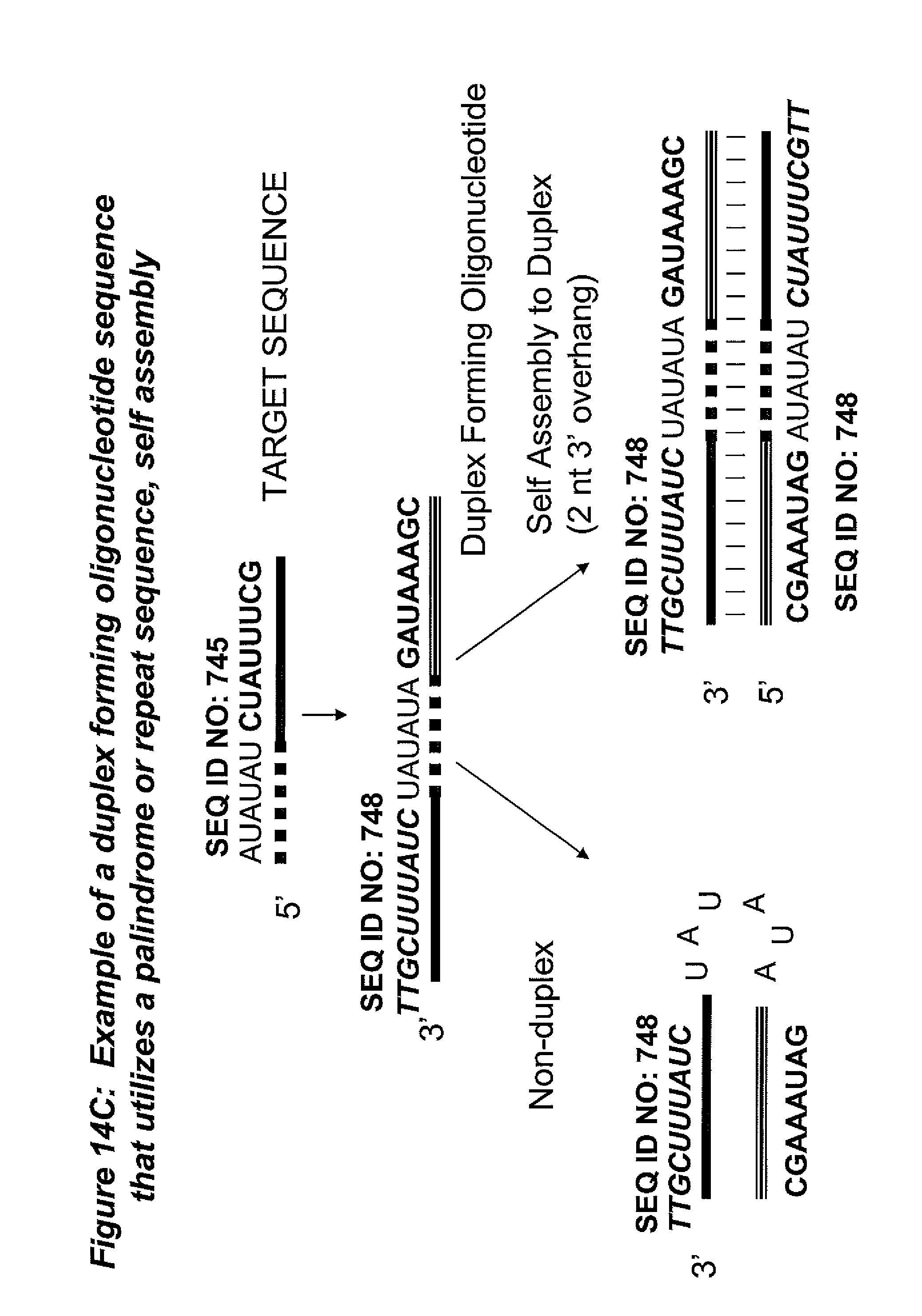 expression and purification of human platelet derived The platelet-derived growth factor (pdgf) family consists of subunits a and b and receptors α and β this paper evaluates the potential role of the homodimer pdgf-bb as a growth factor in meningiomas.