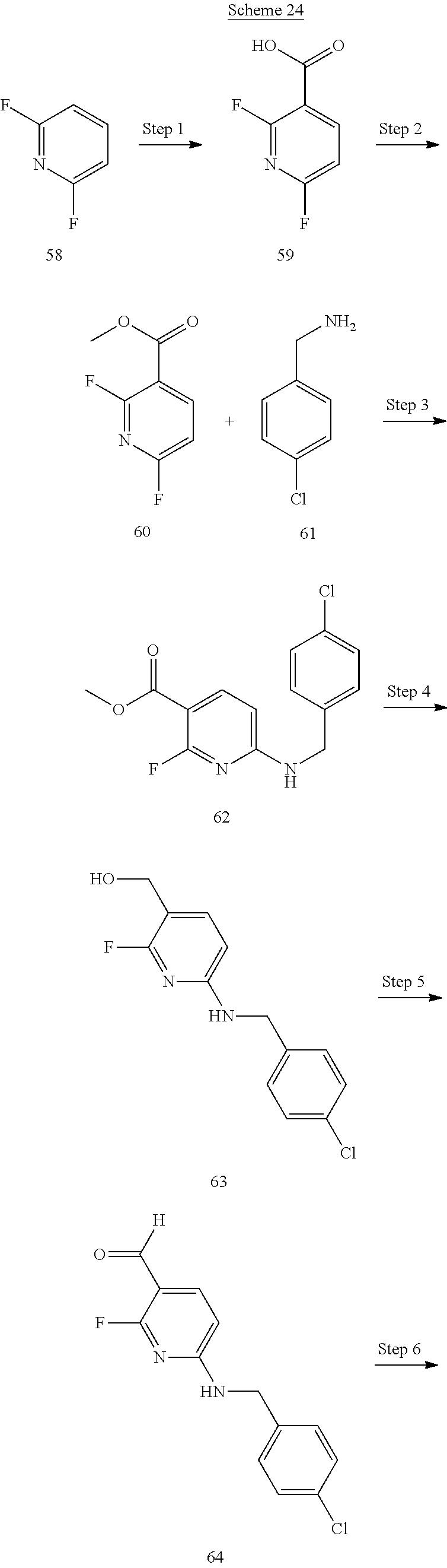 Figure US20110166174A1-20110707-C00088