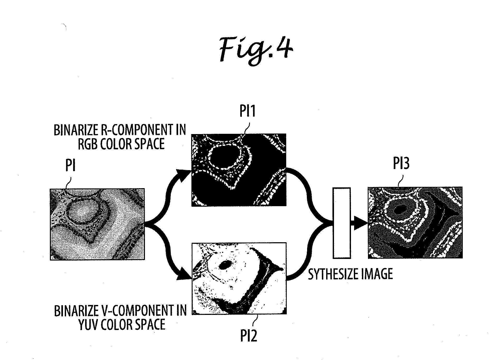 Patent US20130094733 - Region segmented image data creating