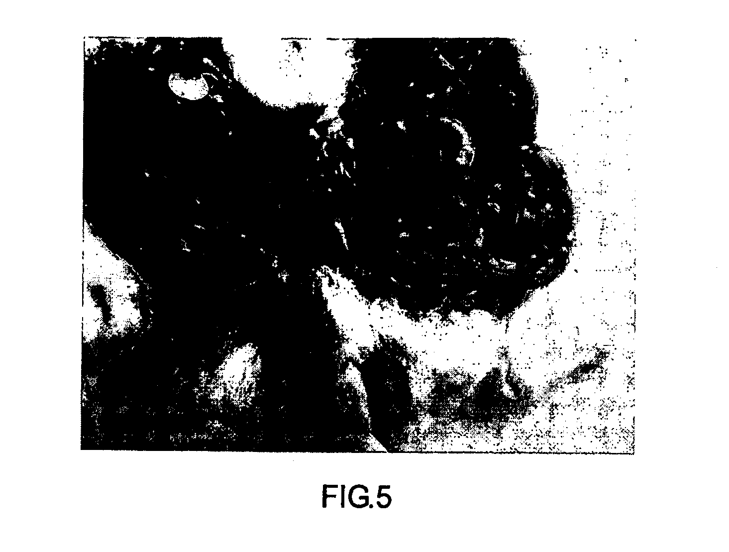 patent us20130123213 modified starch material of biocompatible patent drawing