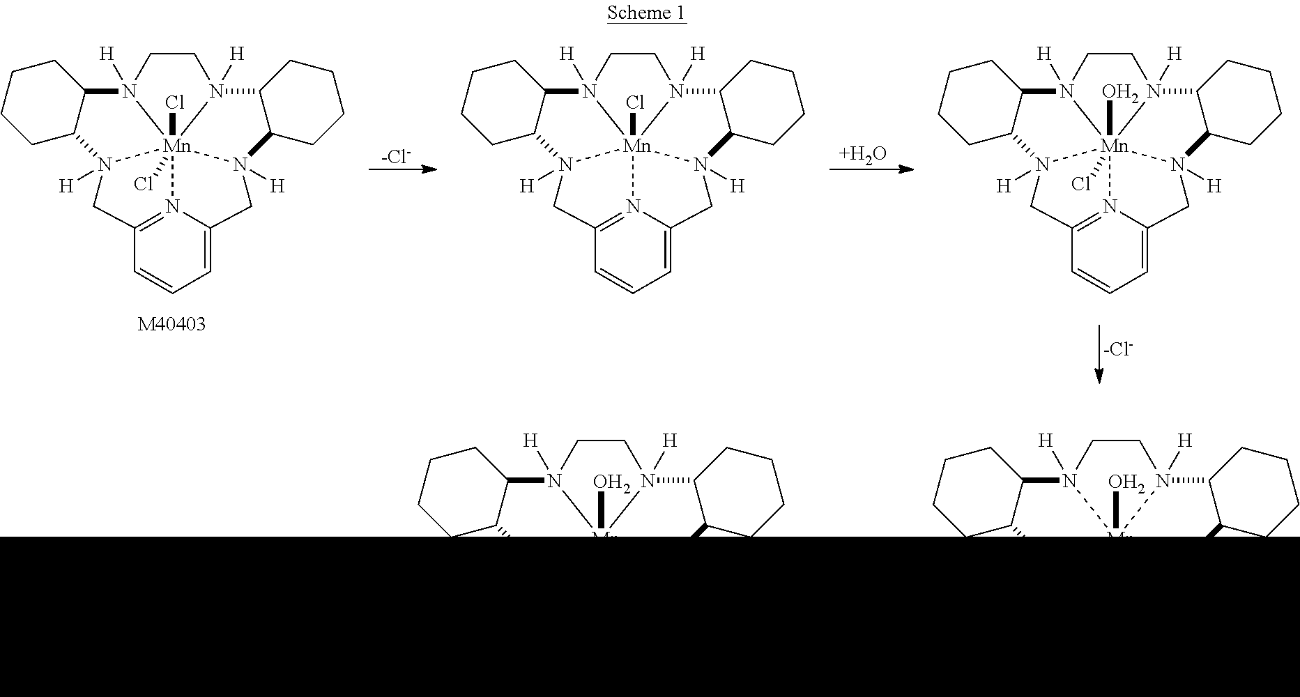 reactive organotransition metal complexes used in essay Purchase advances in organometallic chemistry, volume 38 dm roundhill, organotransition-metal chemistry the stabilization of highly reactive species by.