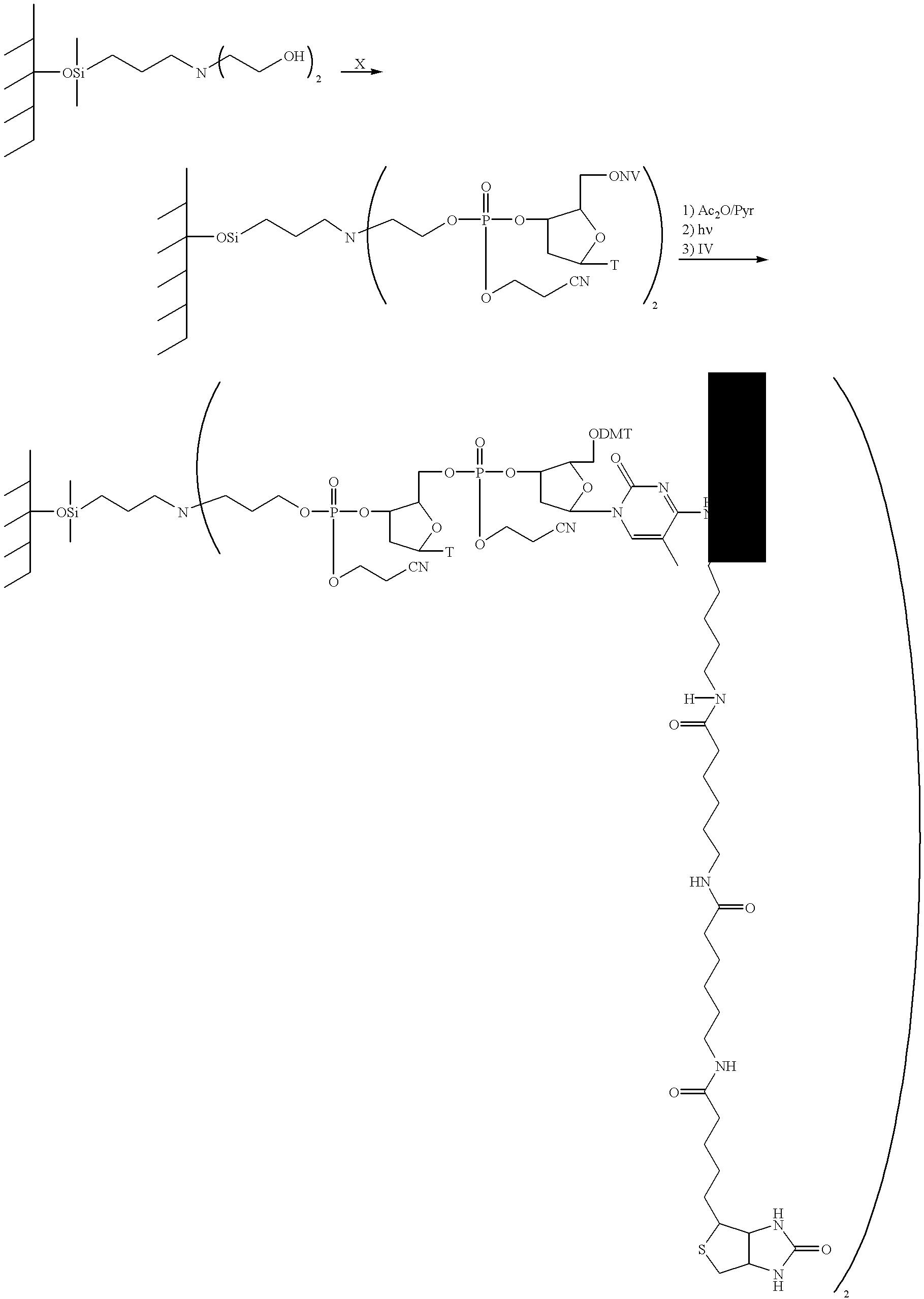 Figure US06197506-20010306-C00016