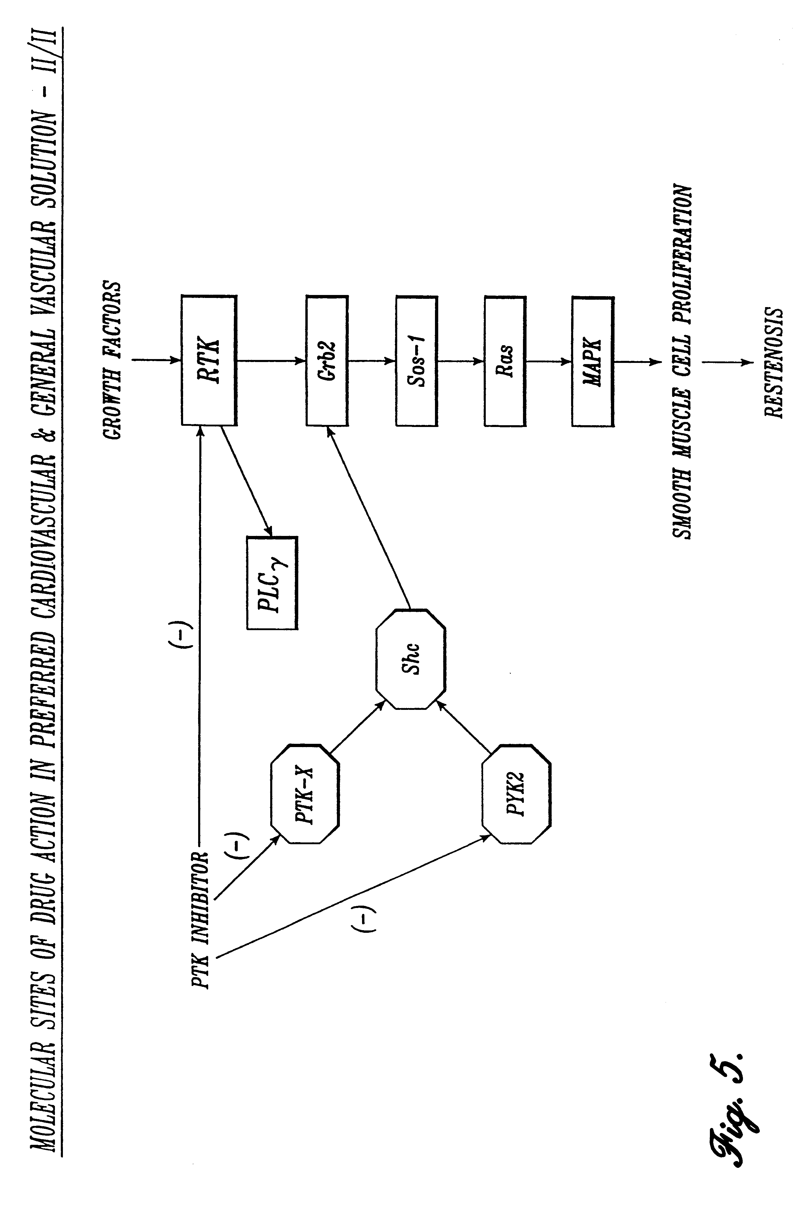 neurokinin-1 antagonist dopamine antagonist and corticosteroid
