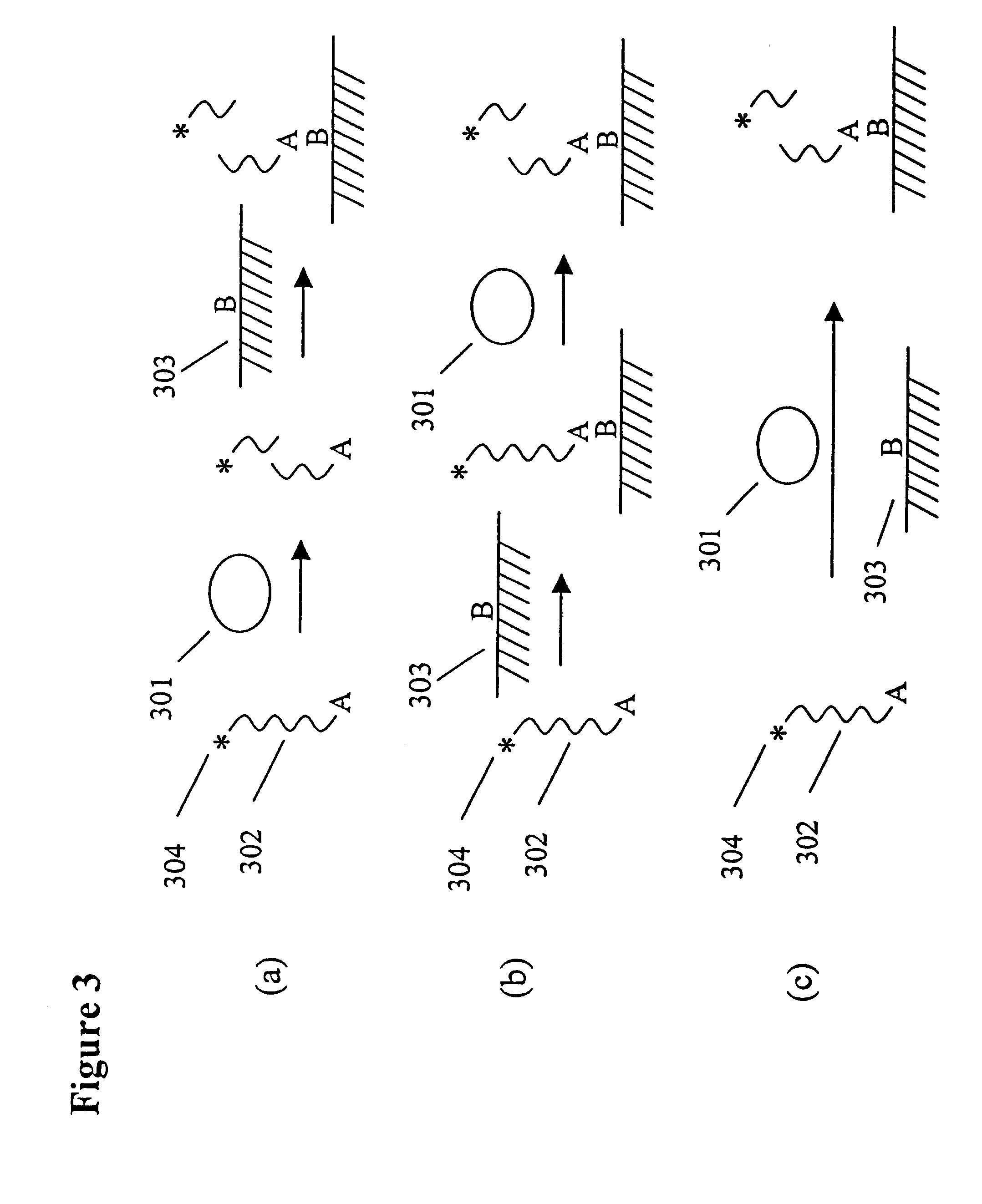 proteins and nucleic acids Abstract the raman spectrum of a protein or nucleic acid consists of  numerous discrete bands representing molecular normal modes of vibration and .