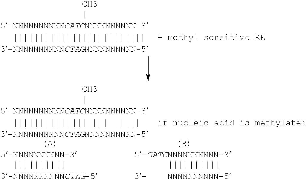 Figure US06383754-20020507-C00029