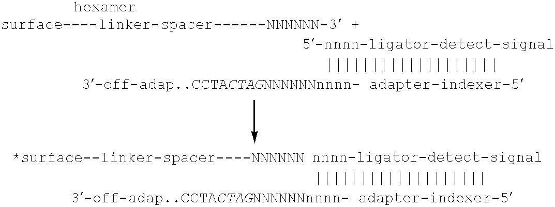 Figure US06383754-20020507-C00036