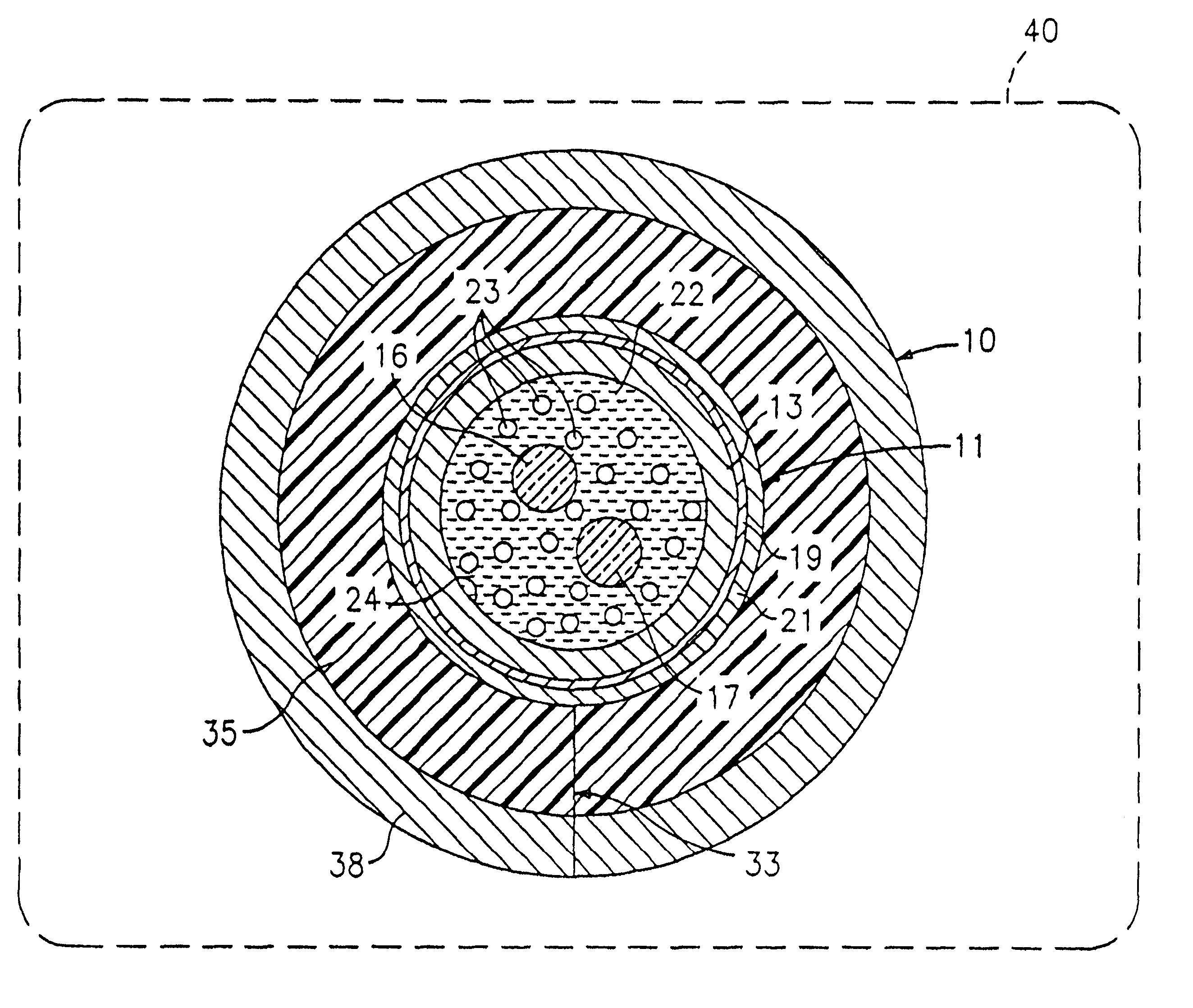 patent us6404961