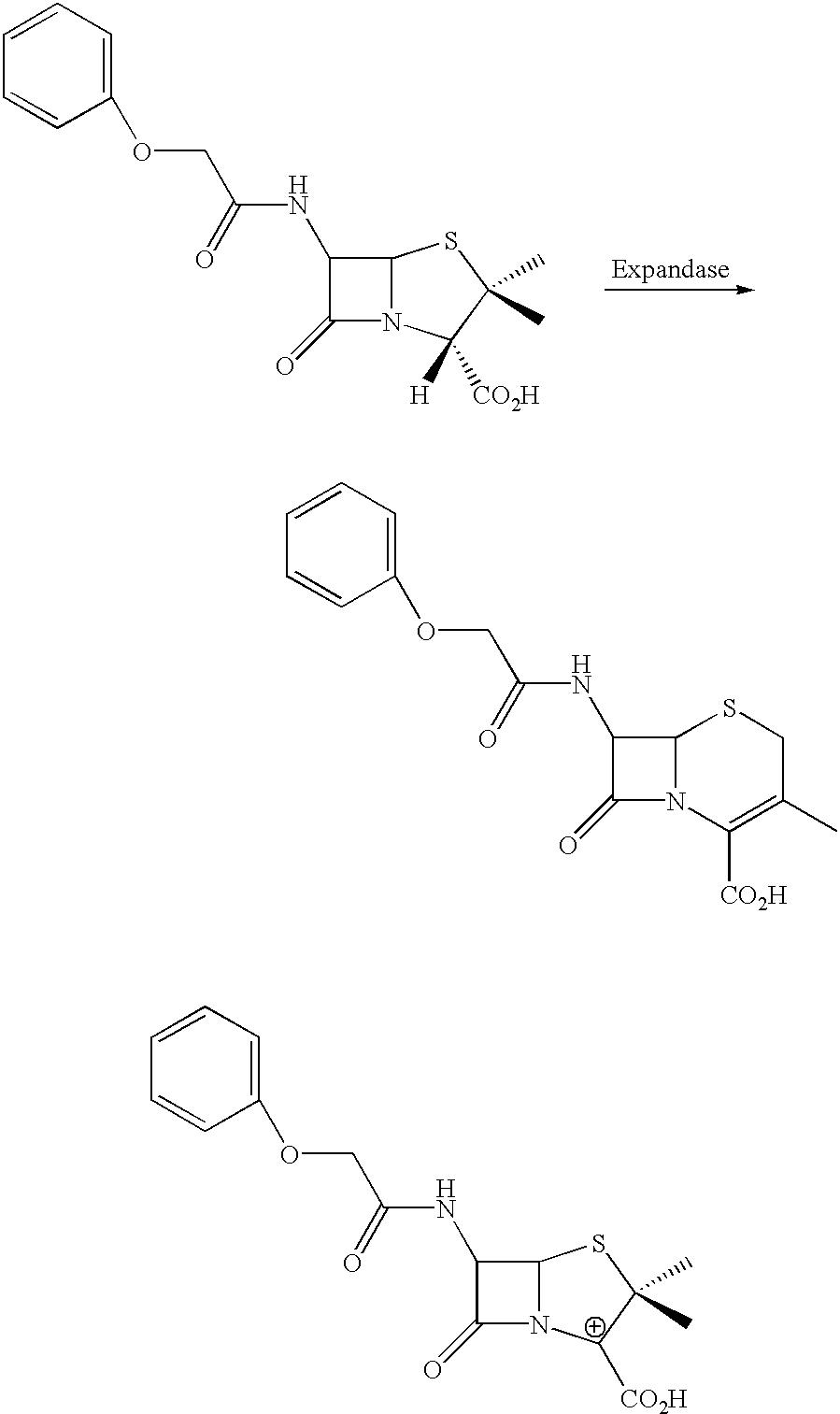 Figure US06406855-20020618-C00001