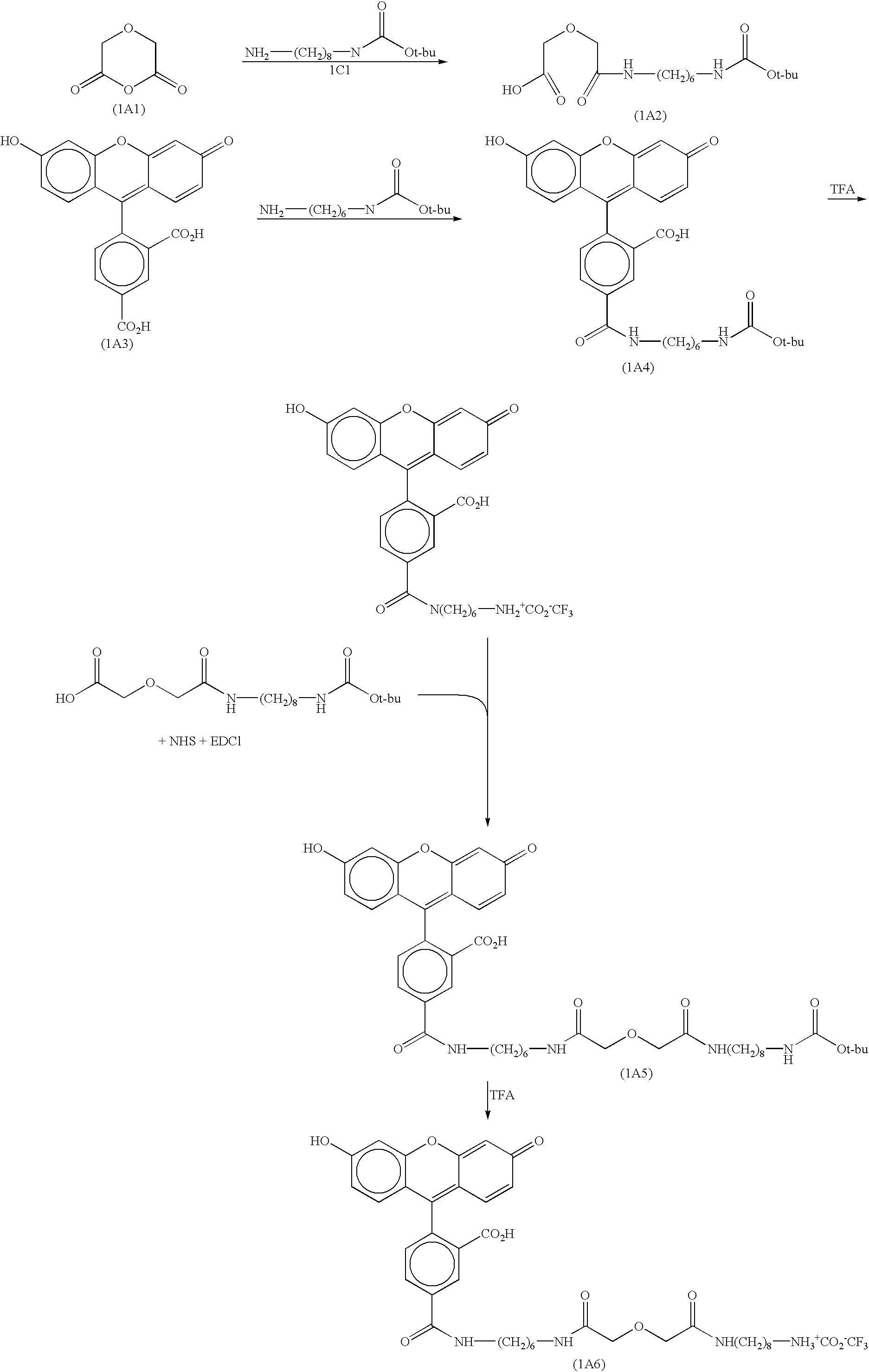 Figure US06406913-20020618-C00018