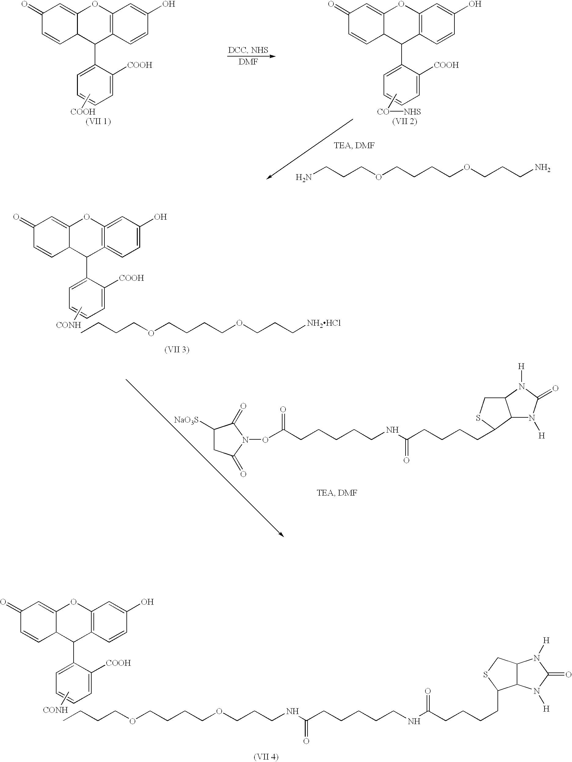 Figure US06406913-20020618-C00021