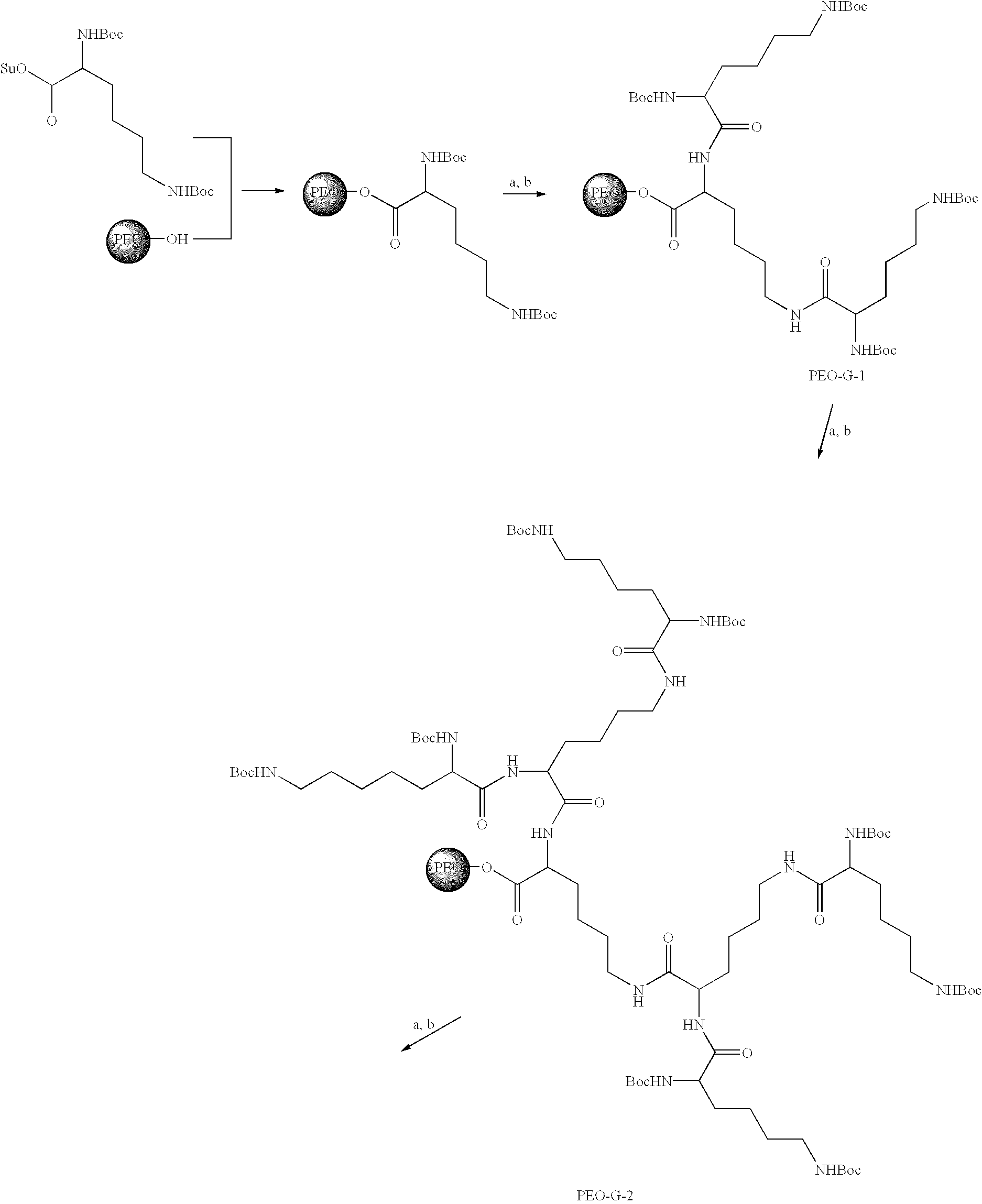 Patent Us6642363 Polymers Containing Polysaccharides