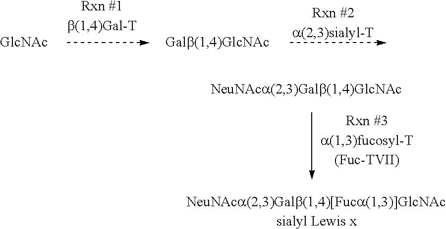 Figure US06693183-20040217-C00003