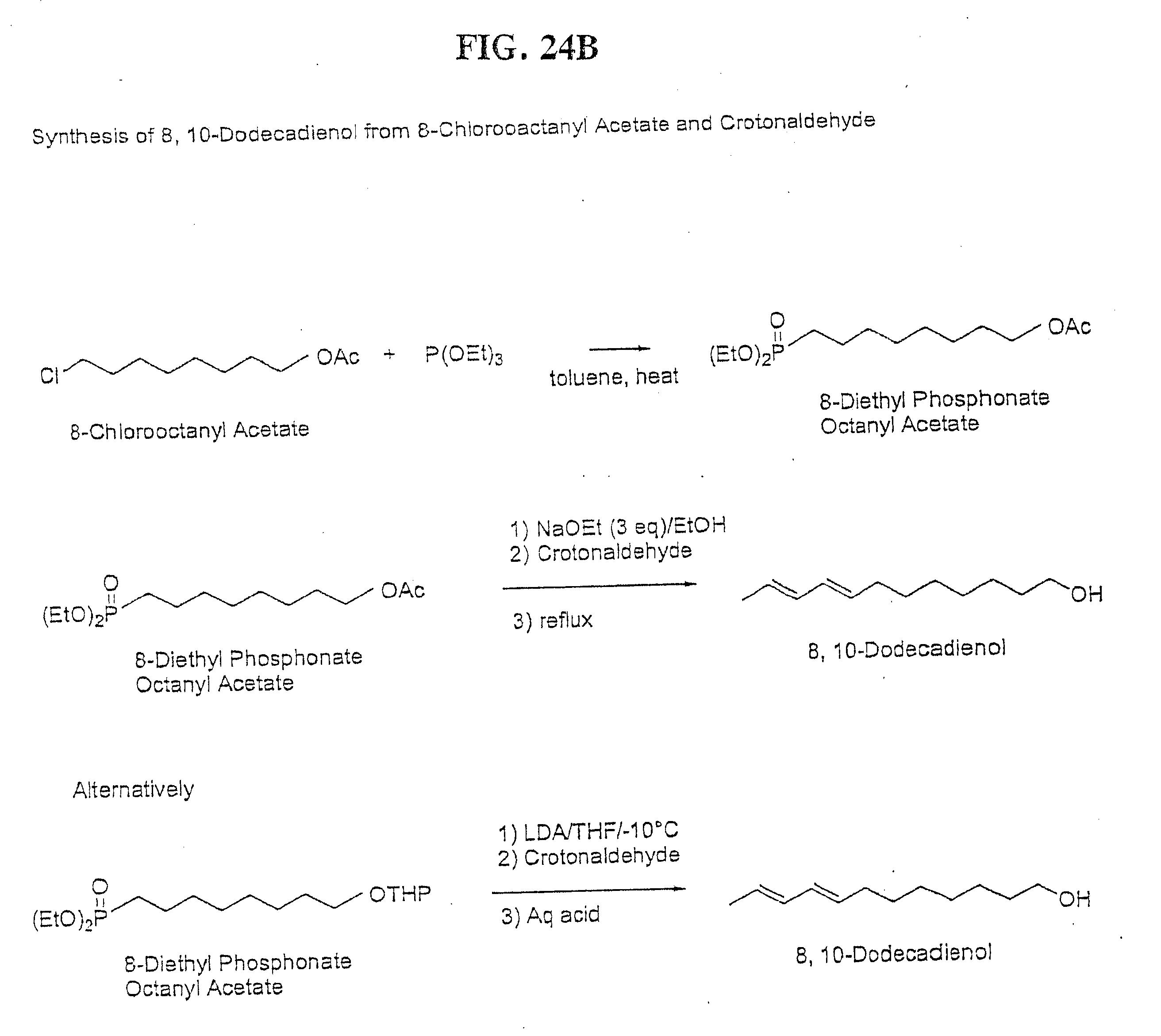 cross metathesis of olefins