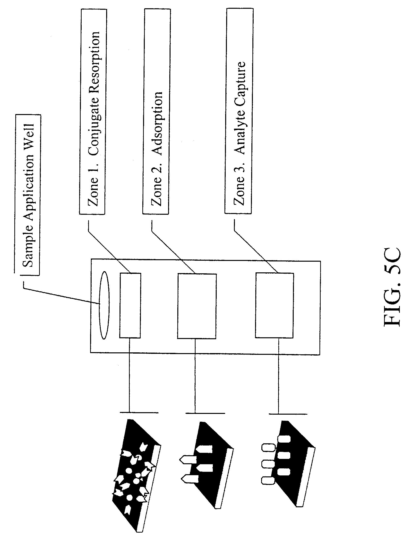 Estrogen receptor binding assay