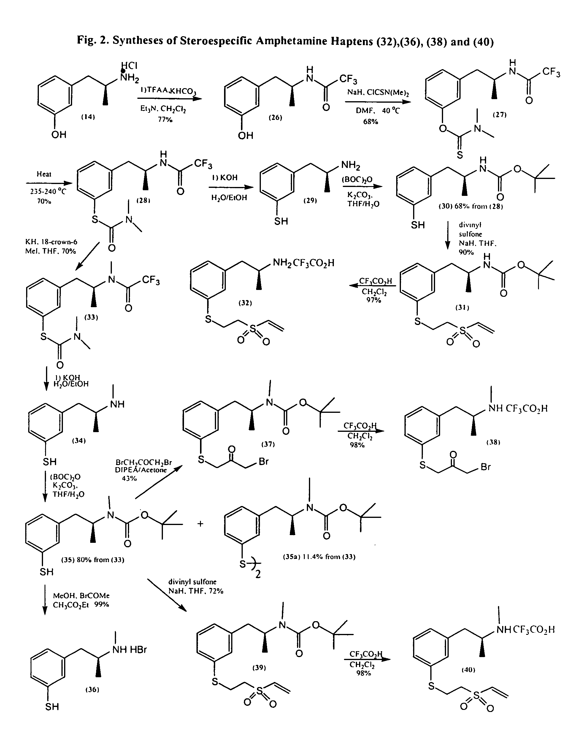 amphetamine sythesis Amphetamine syntheses pdf amphetamine syntheses pdf amphetamine syntheses pdf download direct download amphetamine synthesis pdf within the synthesis of amphetamine, these stereoselective transformations have.
