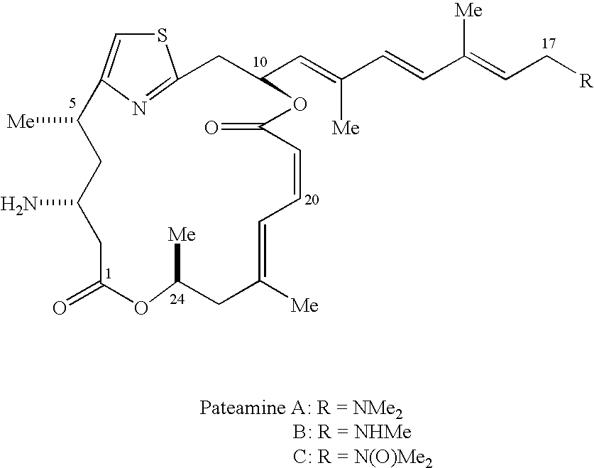 thesis on thiazole Synthesis of heterocyclic compounds mostmost important important methodmethod forfor thiazolesthiazoles is is hantzschhantzsch thiazole thiazole.