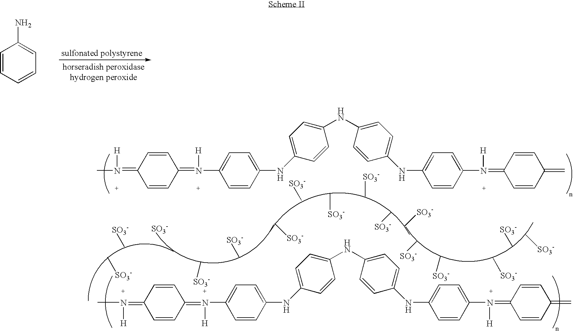 US7309582B2 - Polymer-template complex produced by enzymatic ...