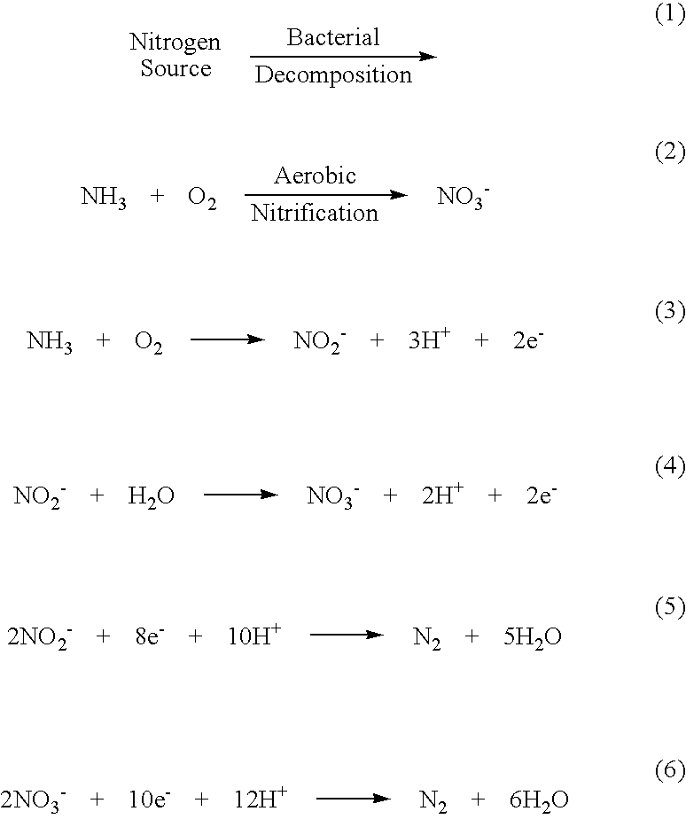 nitrogen removal from wastewater pdf