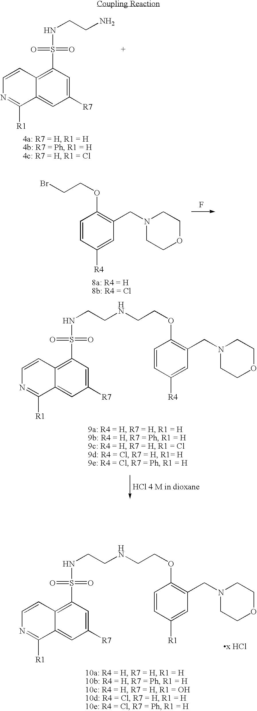 Figure US07414063-20080819-C00028