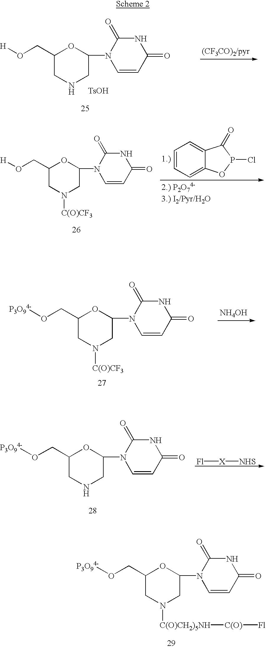 Figure US07468243-20081223-C00013