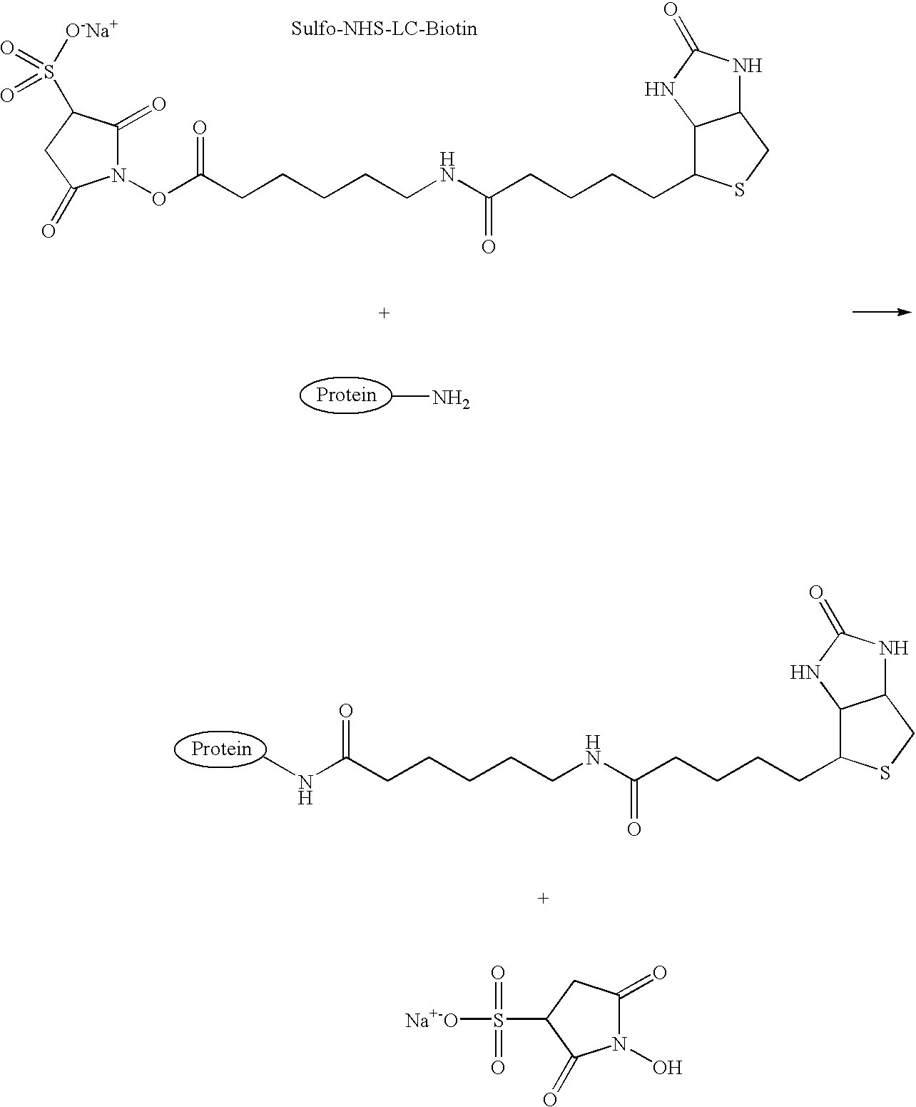 Figure US07521226-20090421-C00001
