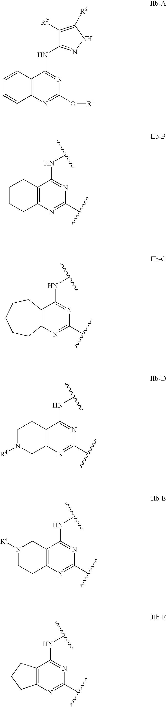 Figure US07531536-20090512-C00095